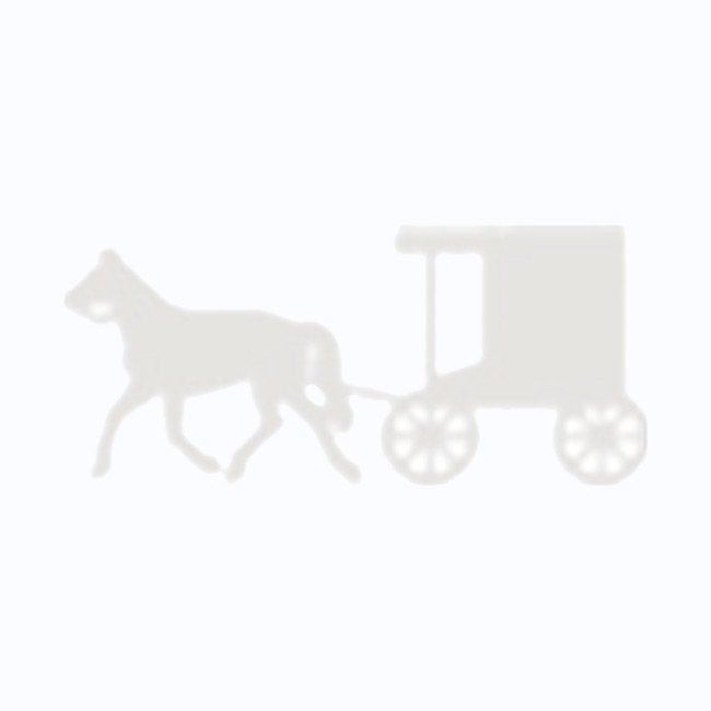 Amish Made Large Stained Goat Wagon - Hunter Green